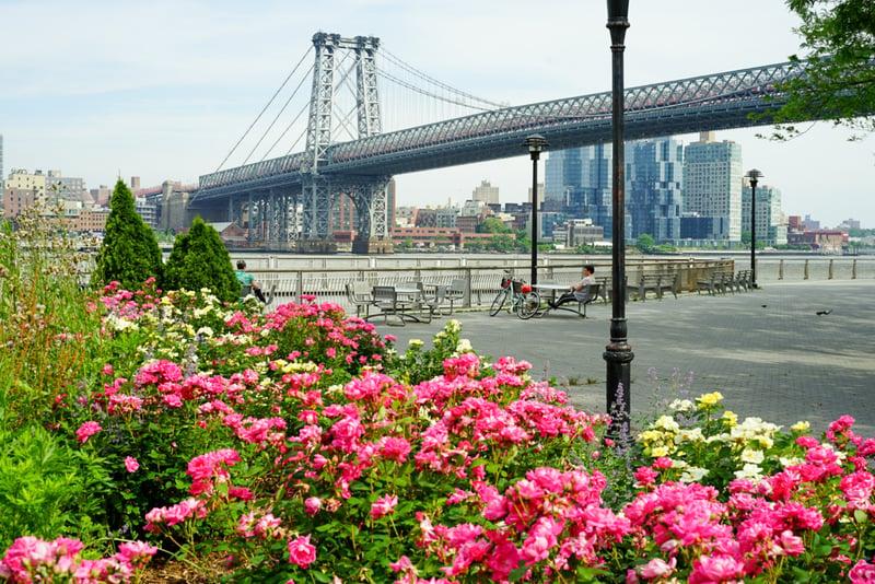 new york garden